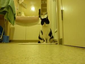 お風呂番あやこ