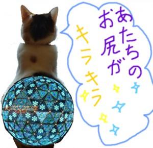 イルミネーション倉子♪
