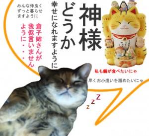 猫の神様にお願い・・・