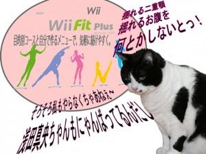 Wiiを舐めたらあかん