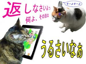 倉子ipadを貸す3